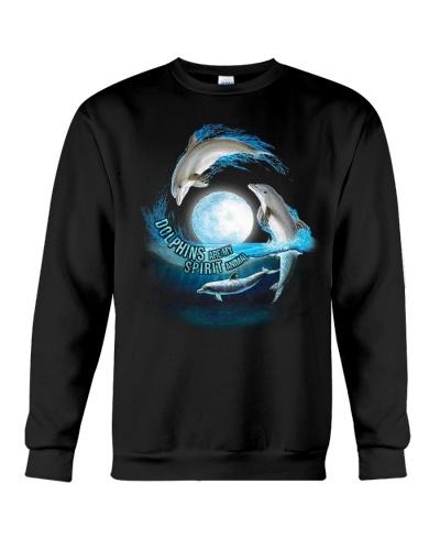 HD Dolphin Spirit