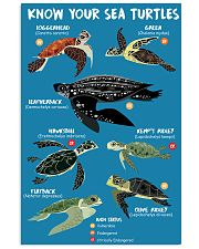 HD Know Your Sea Turtles Poster 11x17 Poster front