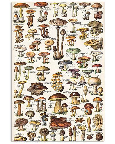 HD Mushroom Poster