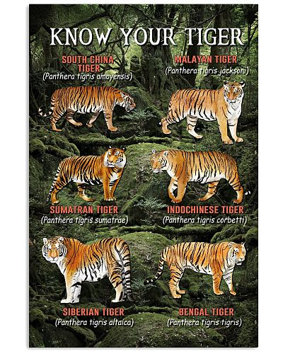 HD Know Your Tiger Poster