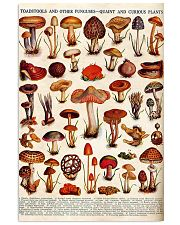 HD Toadstools 11x17 Poster front