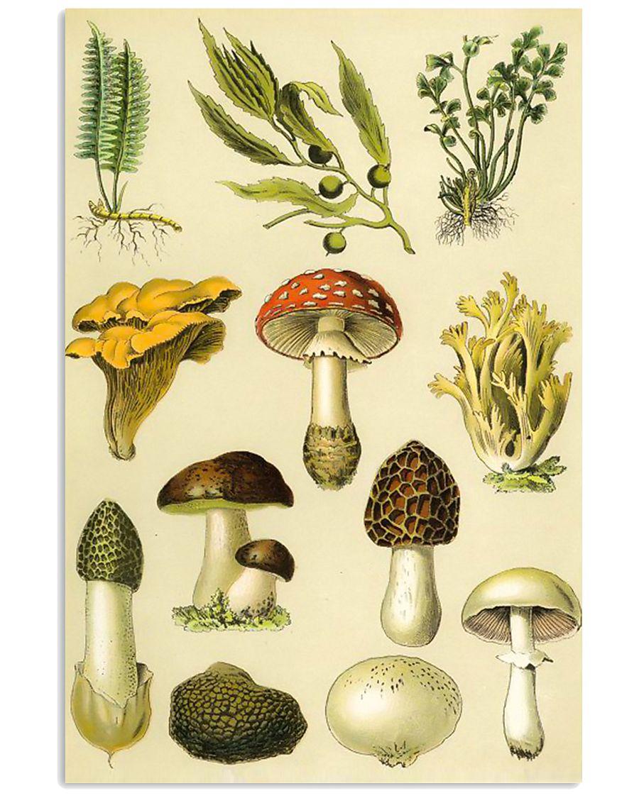 HD Plants 11x17 Poster showcase