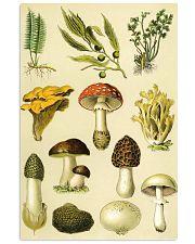 HD Plants 11x17 Poster thumbnail