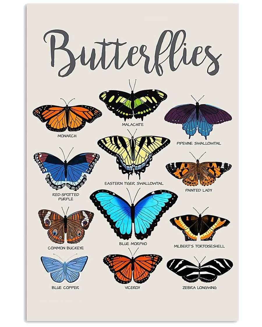 HD Butterflies Poster 11x17 Poster