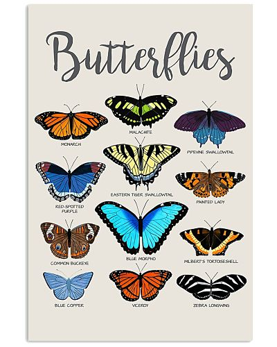 HD Butterflies Poster