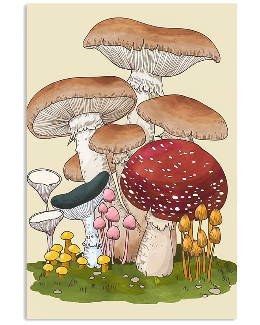 HD Group Of Mushroom 11x17 Poster