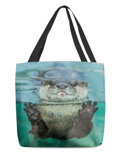 Otter Gets Up Close  H25P3