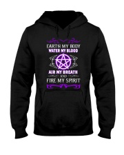 EARTH - WATER - AIR - FIRE Hooded Sweatshirt thumbnail