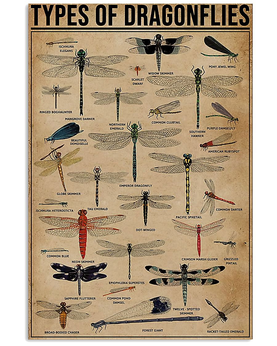 Types Of Dragonflies Vertical 11x17 Poster