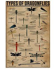 Types Of Dragonflies Vertical 11x17 Poster front