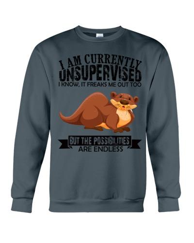 Otter unsupervised