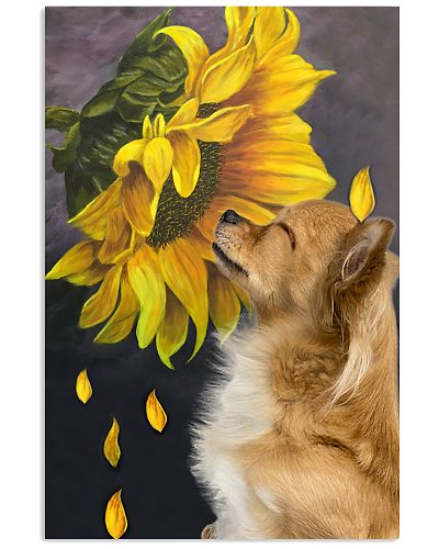 Chihuahua sunflower poster