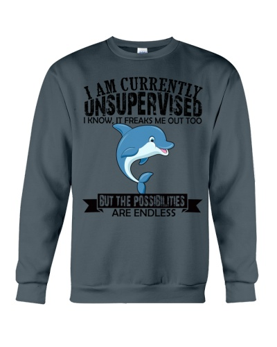 Dolphin unsupervised