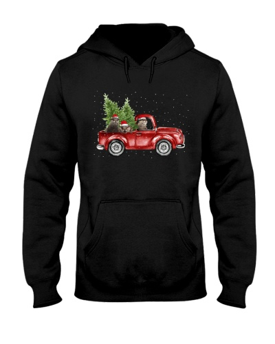 Otter christmas car
