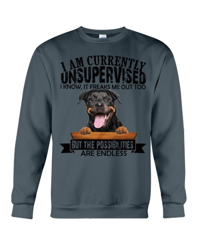 Rottweiler unsupervised
