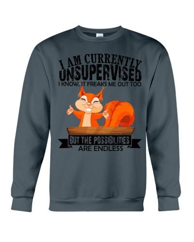 Squirrel unsupervised