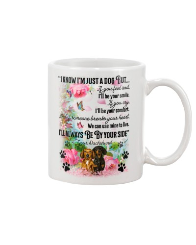 Dachshund i know mug