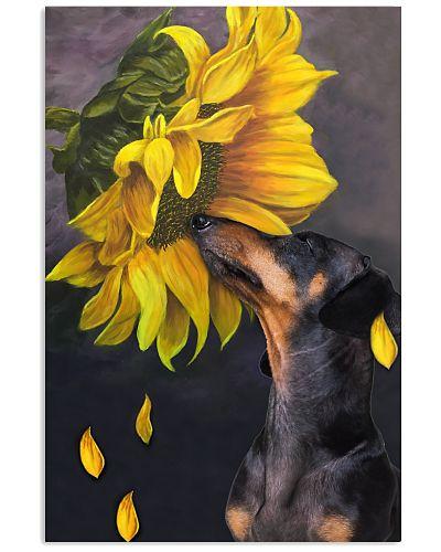 Dachshund sunflower poster