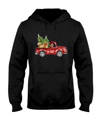 Squirrel christmas car
