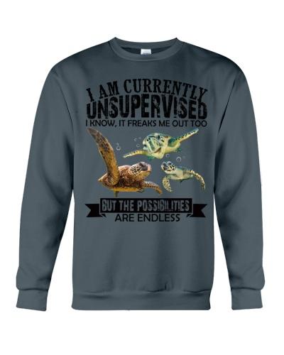 Turtle unsupervised