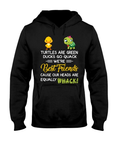 Turtles and ducks are best friend
