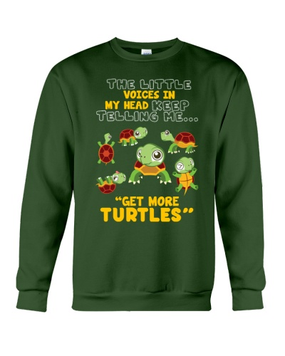Turtle The Little Voices