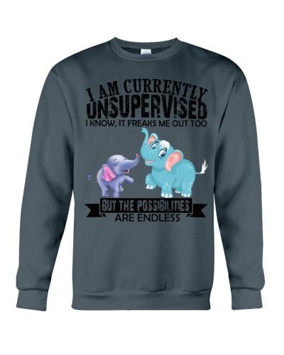 Elephant unsupervised