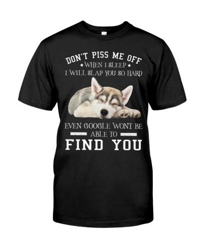 Siberian husky find you