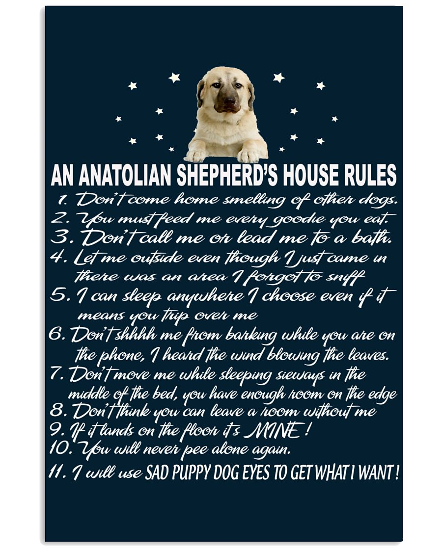 ANATOLIAN SHEPHERD 11x17 Poster