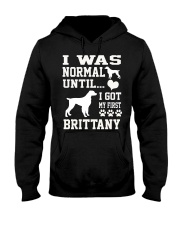 BRITTANY Hooded Sweatshirt thumbnail