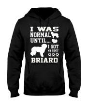 BRIARD Hooded Sweatshirt thumbnail