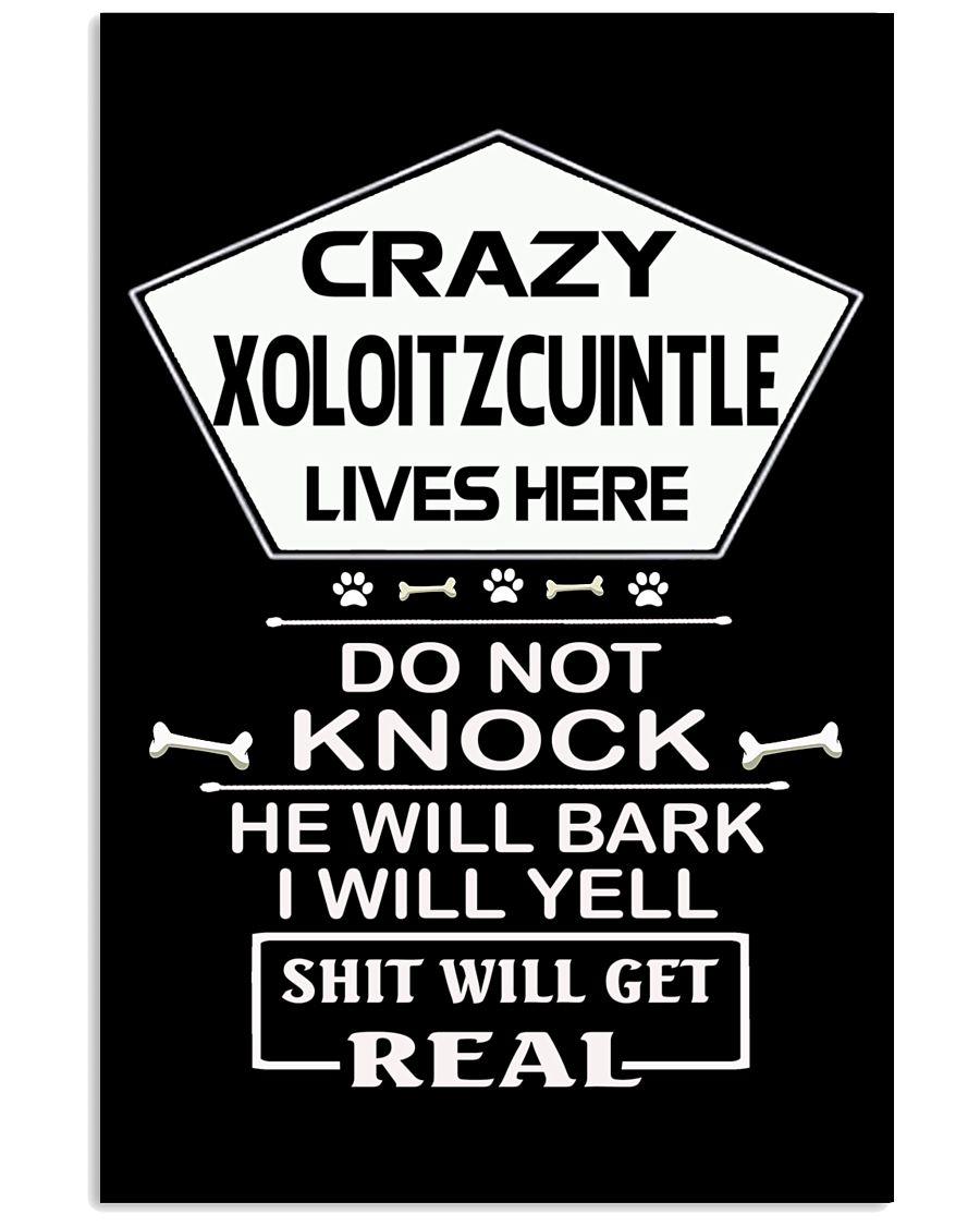XOLOITZCUINTLE 11x17 Poster