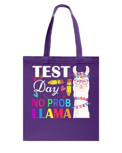 Test Day No Prob Llama Funny Teacher Testing