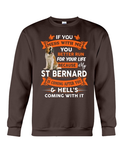 MY ST BERNARD