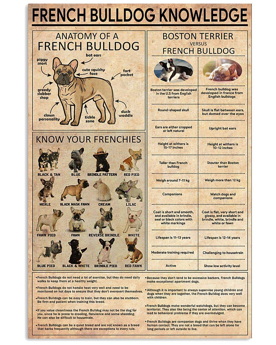 FRENCH BULLDOG 11x17 Poster