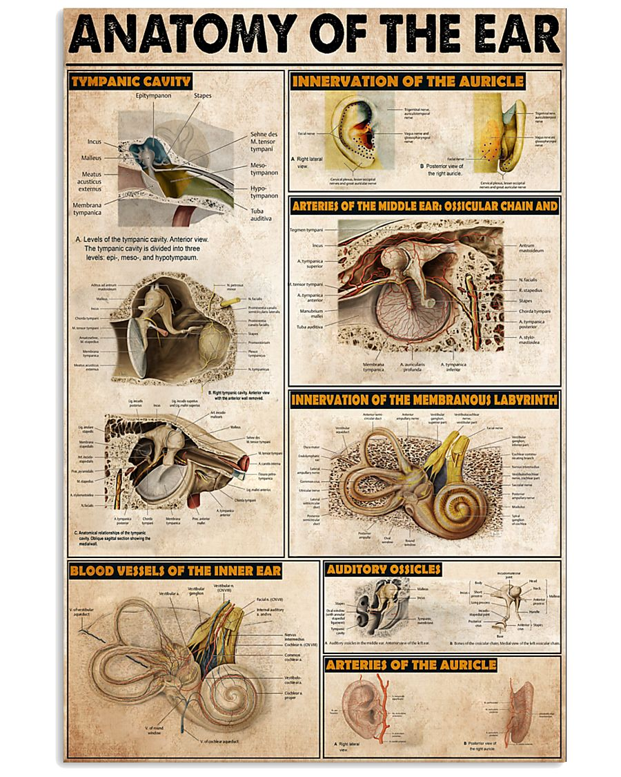 EAR 11x17 Poster