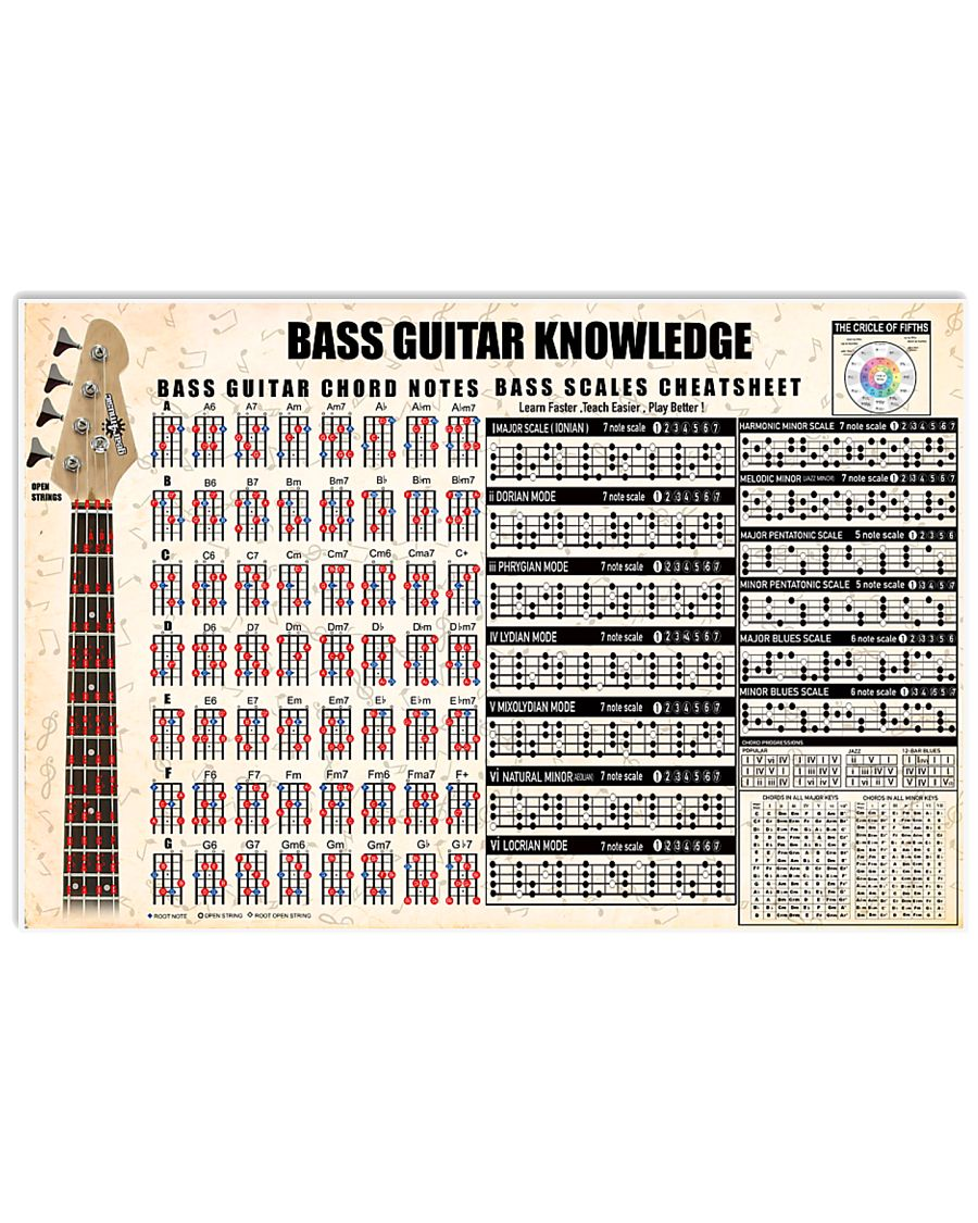 BASS GUITAR KNOWLEDGE 17x11 Poster