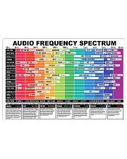 AUDIO FREQUENCY SPECTRUM 17x11 Poster front