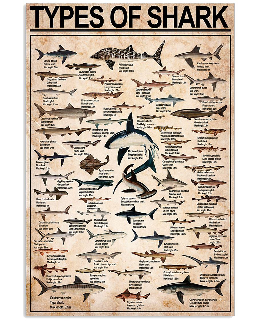 SHARK 11x17 Poster