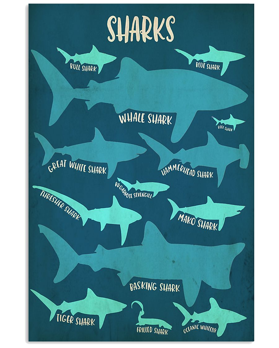 Types of Sharks 11x17 Poster