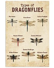 Dragonfly Knowledge 11x17 Poster front