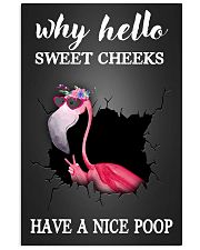 Why hello sweet cheeks have a nice poop 11x17 Poster front