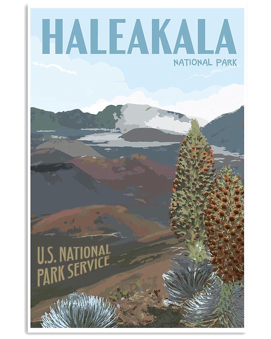 HALEAKALA NATIONAL PARK 16x24 Poster