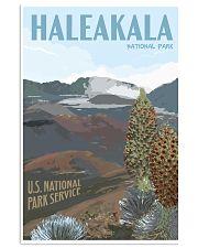 HALEAKALA NATIONAL PARK 16x24 Poster front