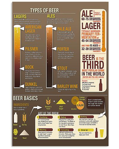 TYPE OF BEER POSTER