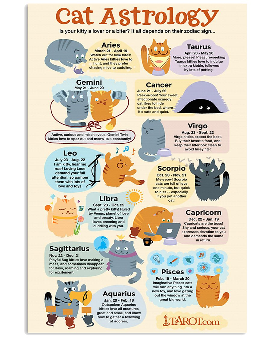 CAT ASTROLOGY 11x17 Poster