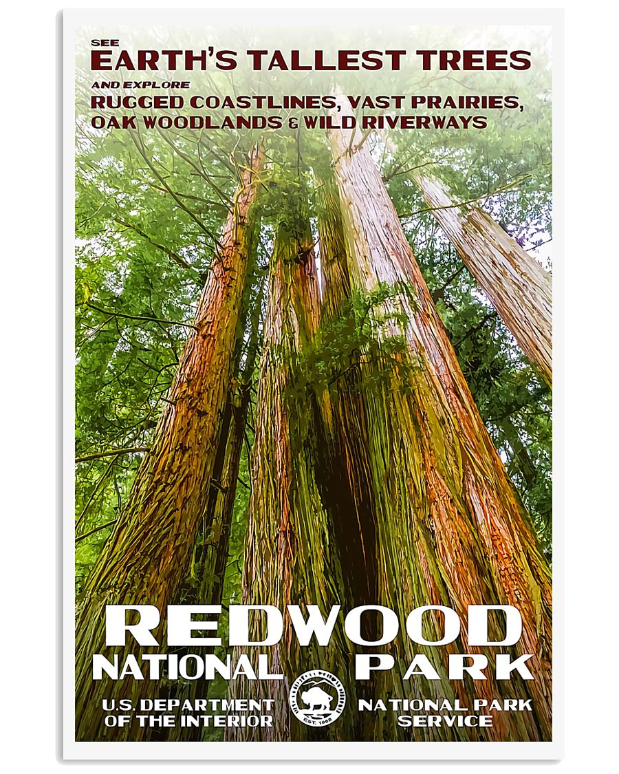 REDWOOD 11x17 Poster