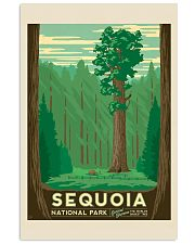 SEQUOIA 16x24 Poster front