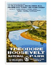 THEODORE ROOSEVELT 11x17 Poster front