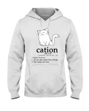Cat-ion Cation science puns Funny Hooded Sweatshirt thumbnail